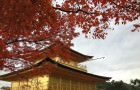 Kyoto: City of Temples and Shrines