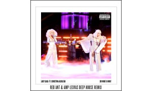 "Lady Gaga's ""Do What U Want"" Remixed by Steven Redant"