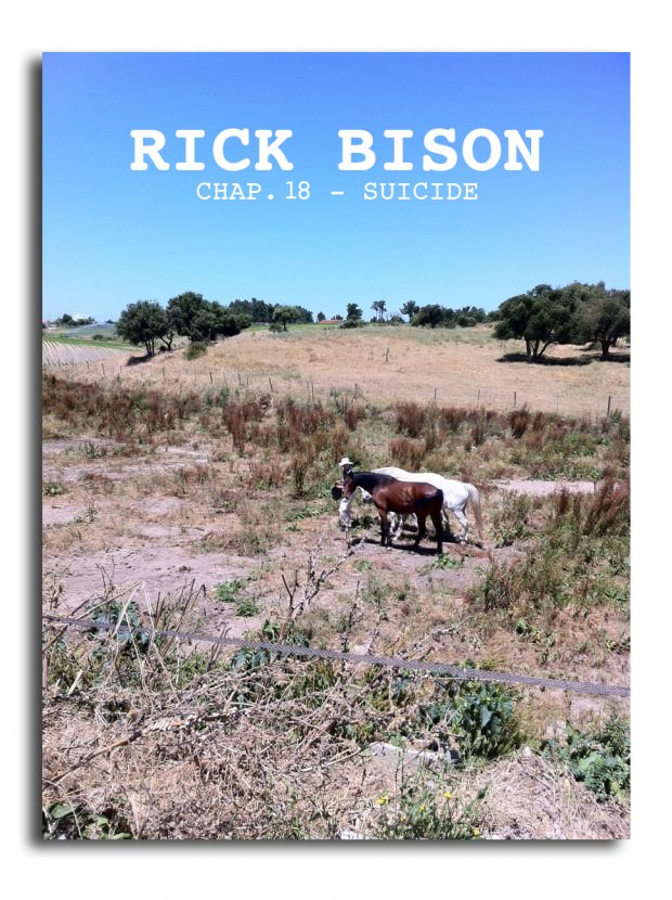 Rick Bison - Chapter XVIII: The Suicide